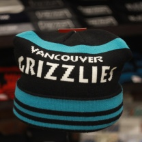 MITCHELL AND NESS Шапка VANCOUVER GRIZZLIES